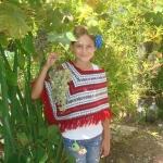 Veggie Garden - Grapes